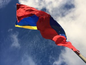 Pole Flag Venezuela